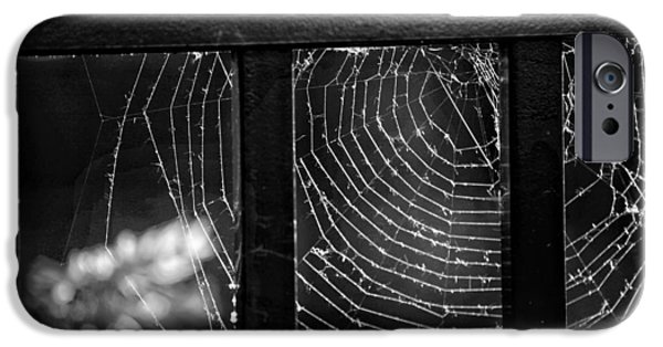 Spider iPhone Cases - Wonder Web iPhone Case by Carrie Ann Grippo-Pike