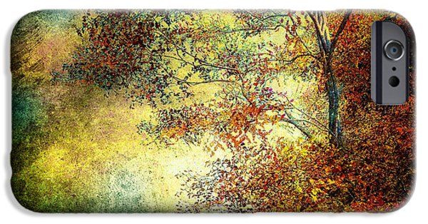 Dreamscape iPhone Cases - Wondering iPhone Case by Bob Orsillo