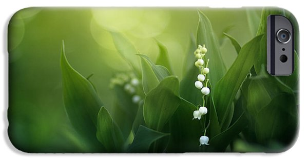 Floral Photographs iPhone Cases - Wonders of Spring Forest iPhone Case by Magda  Bognar