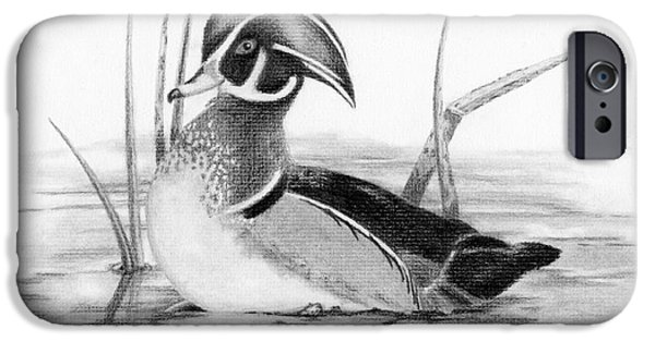 Animal Drawings iPhone Cases - Wood Duck in Pond iPhone Case by Sarah Batalka