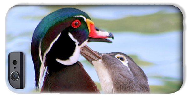 Animals Pyrography iPhone Cases - Wood Duck Love iPhone Case by Bob and Jan Shriner