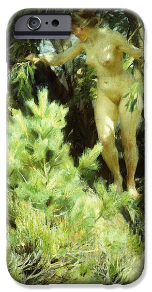 Young Adult iPhone Cases - Wood-Sprite iPhone Case by Anders Leonard Zorn
