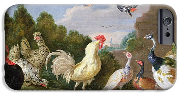 Forest iPhone Cases - Wooded Landscape With A Cock, Turkey, Hens And Other Birds, 17th Century Oil On Canvas iPhone Case by Jan van, the Elder Kessel