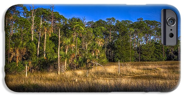 Floods Photographs iPhone Cases - Woodland and Marsh iPhone Case by Marvin Spates