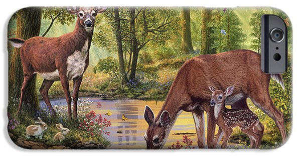 Forest iPhone Cases - Woodland Stream iPhone Case by Steve Read
