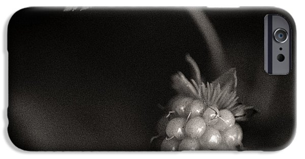 Berry iPhone Cases - Woodland - Study 10 iPhone Case by Dave Bowman