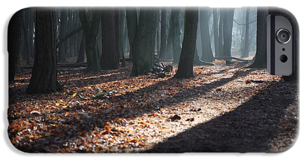 Dog In Landscape iPhone Cases - Woodland walk iPhone Case by Mike Allison