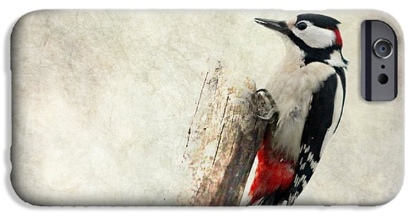 Mural Mixed Media iPhone Cases - Woodpecker In Nature iPhone Case by Heike Hultsch
