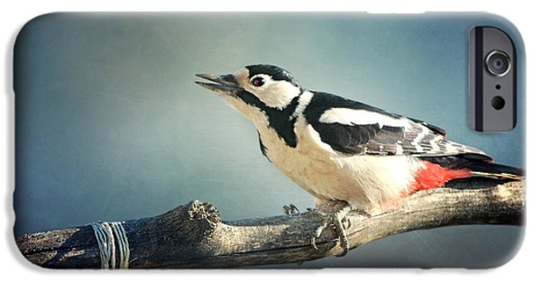 Animal Picture iPhone Cases - Woodpecker In Summer iPhone Case by Heike Hultsch