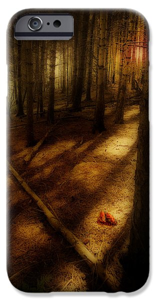 woods with pine cones iPhone Case by Meirion Matthias