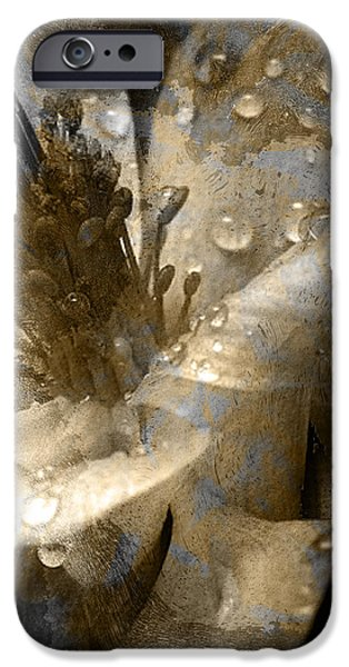 Wren iPhone Case by Yanni Theodorou