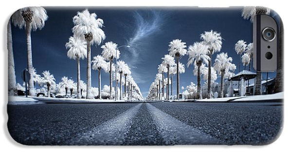 Palm Tree iPhone Cases - X iPhone Case by Sean Foster