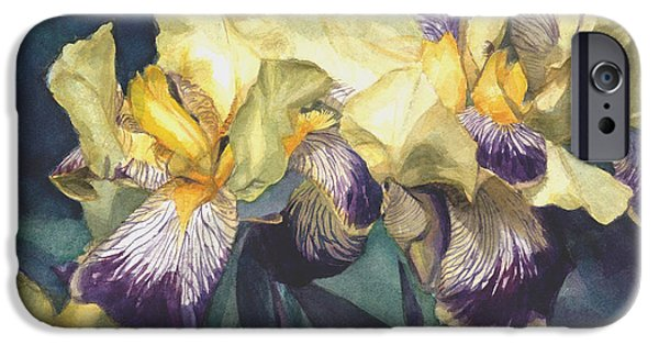 Botanic Illustration iPhone Cases - Yellow and purple streaked irises iPhone Case by Greta Corens