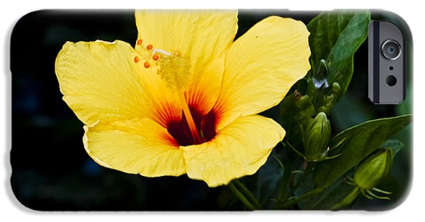 Christi Kraft iPhone Cases - Yellow and Red Hibiscus iPhone Case by Christi Kraft