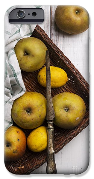 Natural Pyrography iPhone Cases - Yellow Apples iPhone Case by Jelena Jovanovic