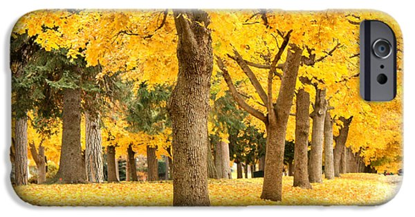 Fall Scenes iPhone Cases - Yellow Autumn Wonderland iPhone Case by Carol Groenen