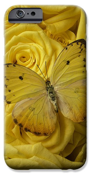 Antenna iPhone Cases - Yellow Butterfly On Yellow Roses iPhone Case by Garry Gay