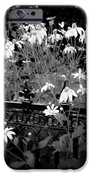 Abstracted Coneflowers iPhone Cases - Yellow Coneflowers Echinacea Wrought Iron Gate BW iPhone Case by Rich Franco