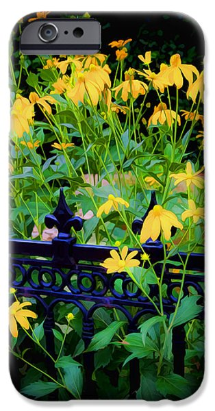 Yellow Coneflowers Echinacea Wrought Iron Gate iPhone Case by Rich Franco