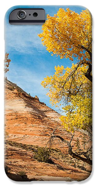 Yellow Cottonwoods and Dry Wash Zion National Park Utah iPhone Case by Robert Ford