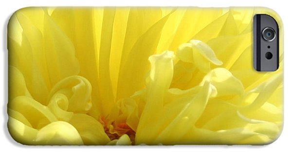 Best Sellers -  - Floral Digital Art Digital Art iPhone Cases - Yellow Dahlia Burst iPhone Case by Ben and Raisa Gertsberg