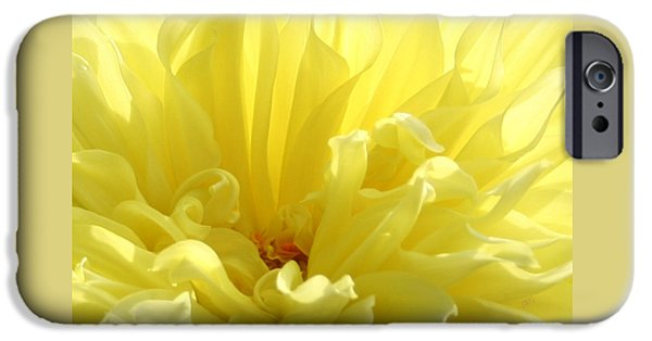 Brg iPhone Cases - Yellow Dahlia Burst iPhone Case by Ben and Raisa Gertsberg