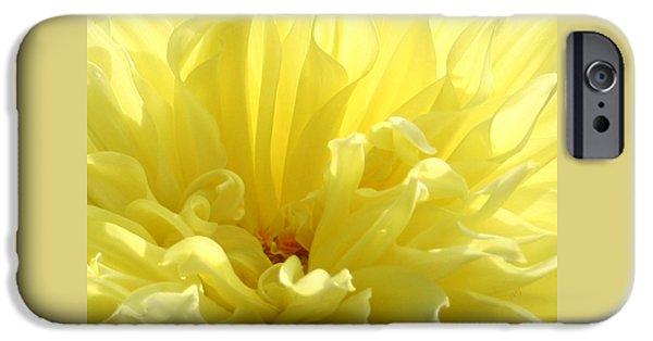 Brg iPhone Cases - Yellow Dahlia Burst iPhone Case by Ben and Raisa Gertsberg