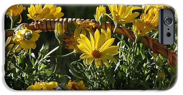 Basket iPhone Cases - Yellow Daisies iPhone Case by Jennifer Muller