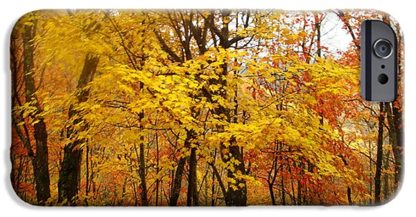 Tree Art Print iPhone Cases - Yellow Days iPhone Case by Rebecca Denis