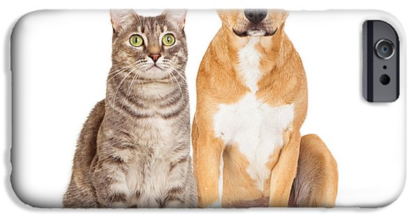 Pup iPhone Cases - Yellow Dog and Tabby Cat iPhone Case by Susan  Schmitz