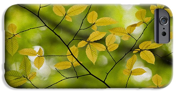 Fall iPhone Cases - Yellow Fall Leaves 2 iPhone Case by Rebecca Cozart