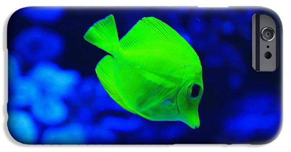 Apnea iPhone Cases - Yellow Fish iPhone Case by Emrah Selamet