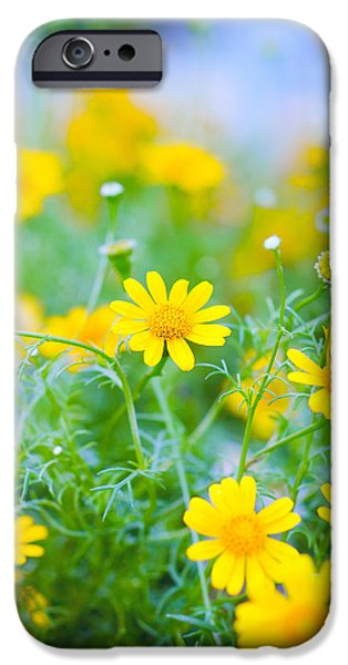 No People Pyrography iPhone Cases - Yellow flowers iPhone Case by Vincent  Dale