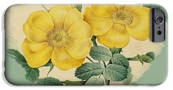 Becky Digital Art iPhone Cases - Yellow Flower Heart-1 iPhone Case by Becky Hayes