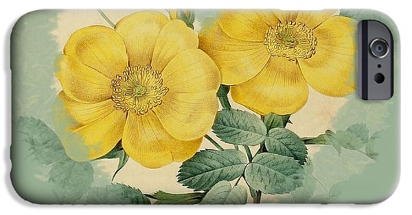 Becky Digital Art iPhone Cases - Yellow Flower Heart-2 iPhone Case by Becky Hayes
