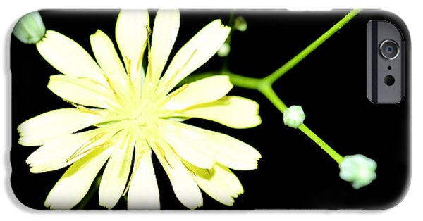 Flora Mixed Media iPhone Cases - Yellow Flower iPhone Case by Toppart Sweden