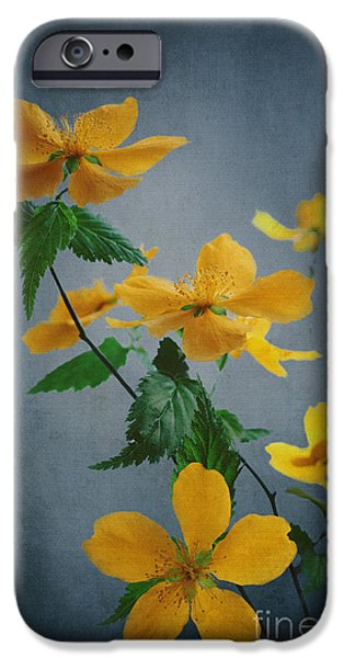 Fine Abstract Pyrography iPhone Cases - Yellow Flowers iPhone Case by Jelena Jovanovic