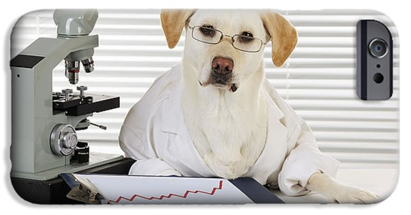 Working Breed iPhone Cases - Yellow Lab In Lab Coat iPhone Case by John Daniels