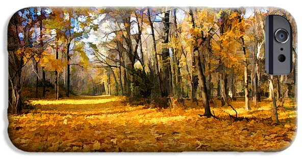 Bucks County iPhone Cases - Yellow Leaf Road iPhone Case by William Jobes