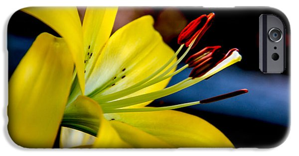 Day Lilies iPhone Cases - Yellow Lily Anthers iPhone Case by Robert Bales