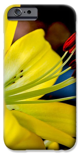 Yellow Lily Anthers iPhone Case by Robert Bales