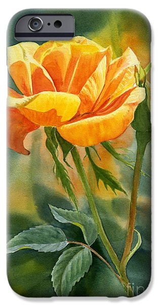 Gold Rose iPhone Cases - Yellow Orange Rose with Background iPhone Case by Sharon Freeman