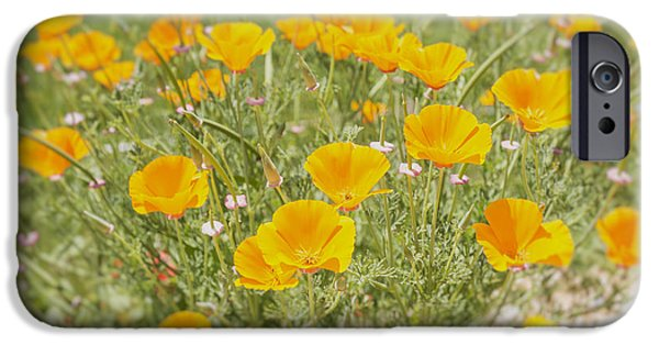 A Sunny Morning iPhone Cases - Yellow Poppy Field iPhone Case by Nomad Art And  Design