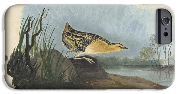 Animal Drawings iPhone Cases - Yellow Rail  iPhone Case by John James Audubon