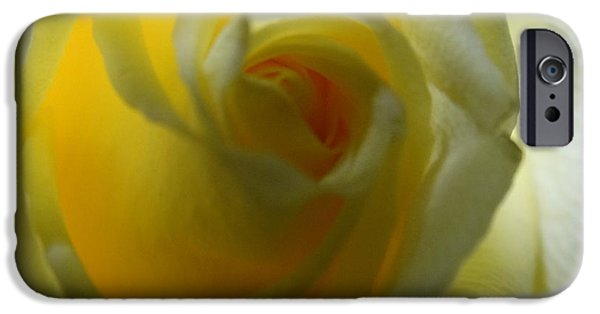 Airbrush iPhone Cases - Yellow Rose iPhone Case by Joseph Baril
