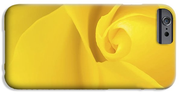 Close Up Floral iPhone Cases - Yellow Rose Macro iPhone Case by Wim Lanclus
