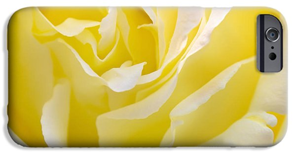 Macro Photographs iPhone Cases - Yellow Rose iPhone Case by Svetlana Sewell