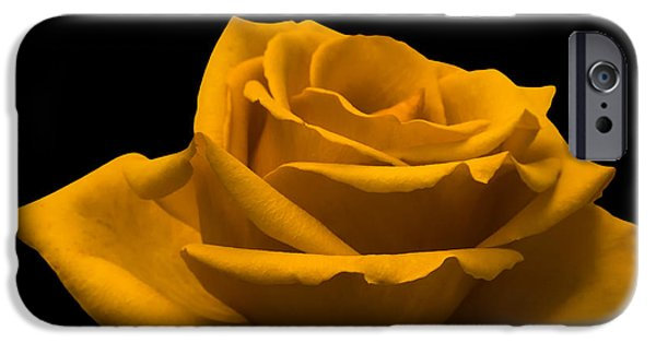Ambiance iPhone Cases - Yellow Rose iPhone Case by Wim Lanclus