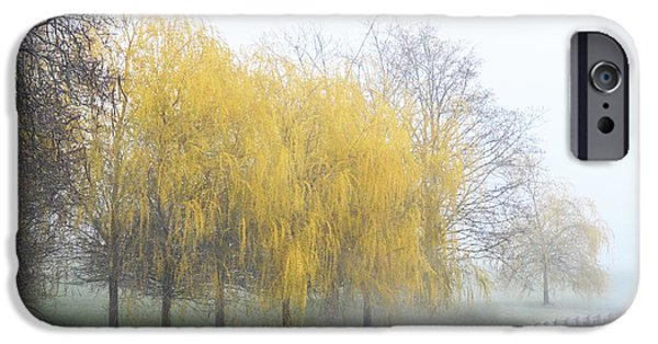 Flora Mixed Media iPhone Cases - Yellow Trees by the lake - Serene Landscape iPhone Case by AdSpice Studios
