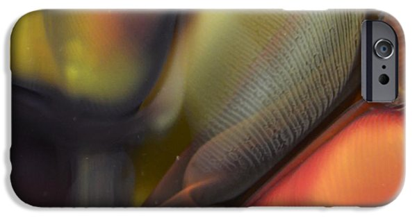 Close Up Glass iPhone Cases - Yellow with Texture iPhone Case by Kimberly Lyon